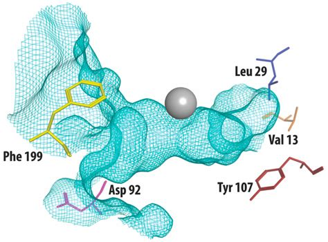 molecules free full text the process and strategy for