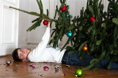 setting up christmas tree the of setting up a tree without destroying your home realtor 174