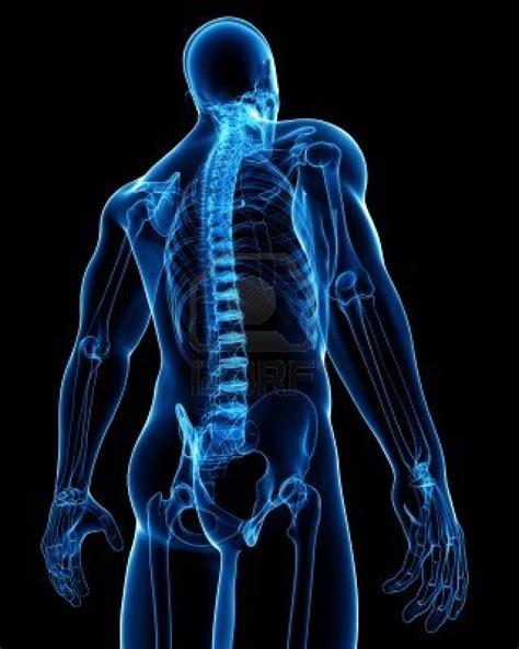 rayos x rayos x auto design tech