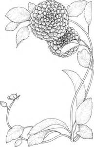 zinnia flower coloring page zinnia flowers coloring page supercoloring com