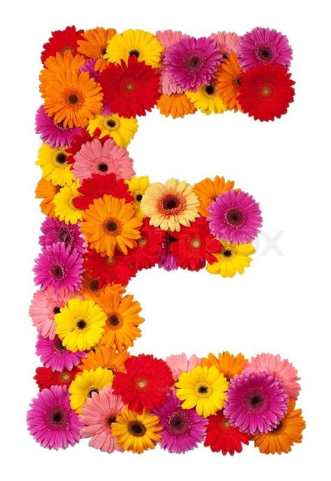 Home Decoration Flowers Letter E Flower Alphabet Isolated On White Background