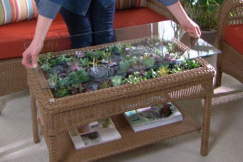 terrarium coffee table ask martha new product introductions beautiful outdoor