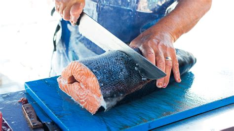fish pedicures illegal in texas important news 28 000 pounds of illegally caught fish busted in texas