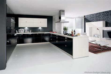 modern kitchen pictures and ideas contemporary kitchen cabinets pictures and design ideas