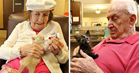 animal shelter partners  elderly care facility  save