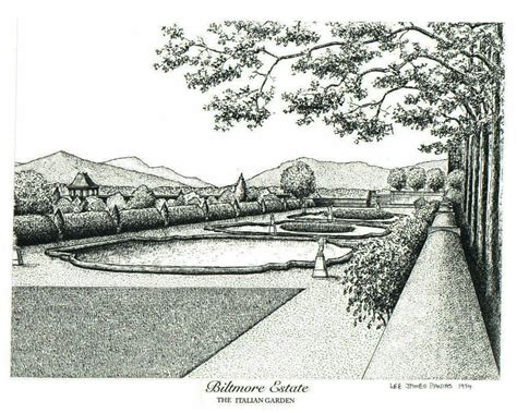 drawing of garden original drawings