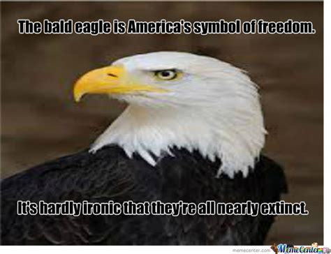 Bald Eagle Meme - bald eagle by derkonig meme center