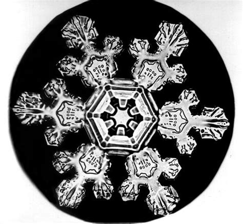 bentley snow the snowflake man of vermont the public domain review