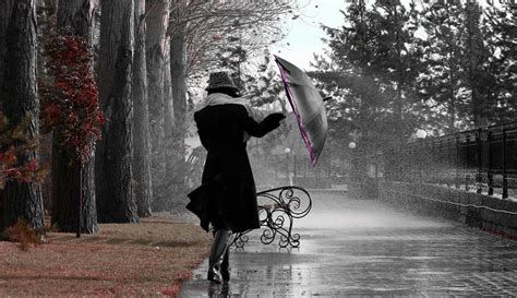 imagenes de otoño lluvioso d 237 a lluvioso lukor