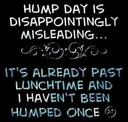 Hump Day Meme Dirty - hump day meme dirty hump day is disappointingly picsmine