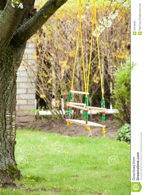 swing for tree branch tree swing royalty free stock photo image 31519045