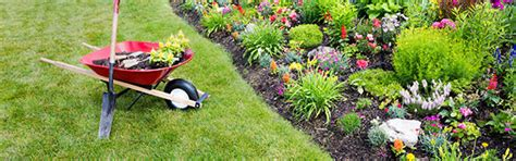 flower bed watering system flower bed irrigation systems latest news turf express turf express