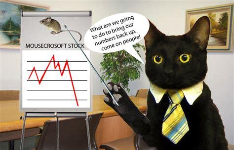 wallpaper business cat business cat lecture by rugodsorareumen on deviantart