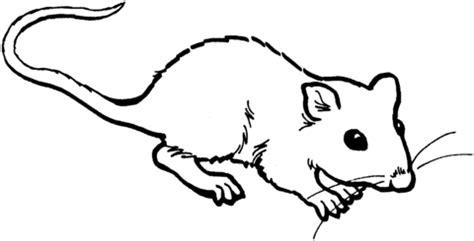 coloriage rat 4 | coloriages à imprimer gratuits