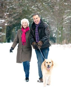 winter pet safety: de icing tips for pet owners