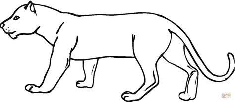 black panther animal coloring pages coloring pages