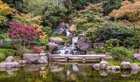 kyoto garden maybe it s because