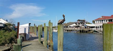 charleston among top 20 most charming small cities in to enjoy charleston harbor head to shem creek and the old