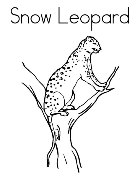 snow cat coloring page christmas candles coloring pages snow cat coloring page