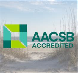 Aacsb Mba Healthcare by M S Business Analytics Cameron School Of Business Uncw