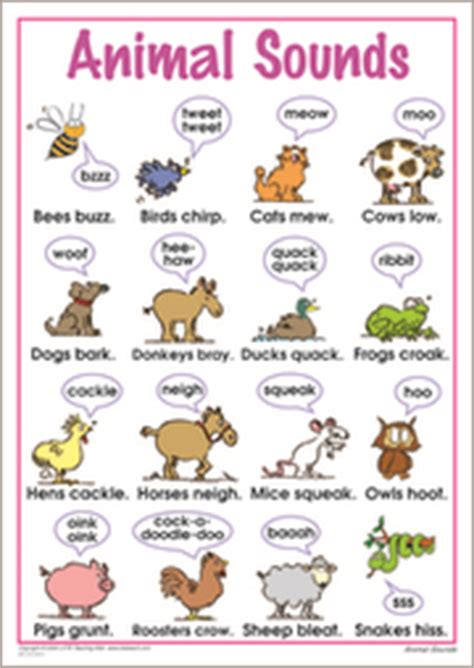 animal sounds lote teaching aids