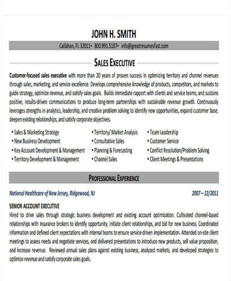 Submit A Resume Meaning by 25 Executive Resumes In Pdf Sle Templates