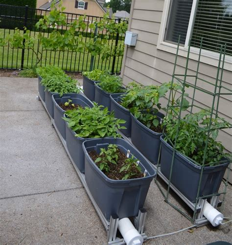 self watering container garden may 31 with self watering container garden we re