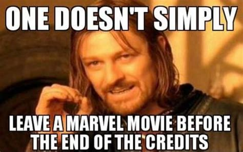 Meme Marvel - top 30 funny marvel avengers memes quotes and humor