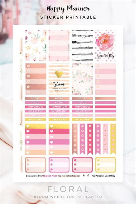 free printable planner supplies 17 best ideas about cute planner on pinterest college