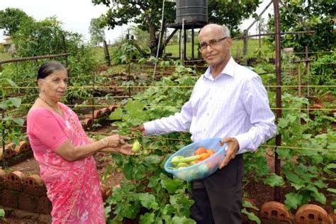 Kerala Kitchen Garden by India Together Vegetables In The Backyard Shree Padre 26 June 2013