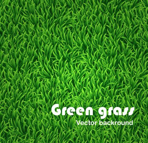 grass background pattern free green grass vector free vector download 7 224 free vector