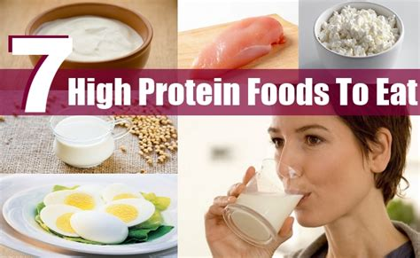 7 protein foods top 7 high protein foods to eat style presso