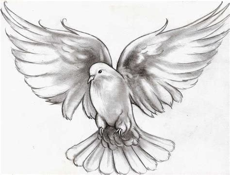 flying dove meaning animals design
