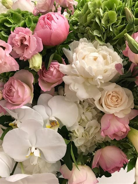 fine flowers blog by bbrooks fine flowers blog by bbrooks 187 blog archive 187 spendid