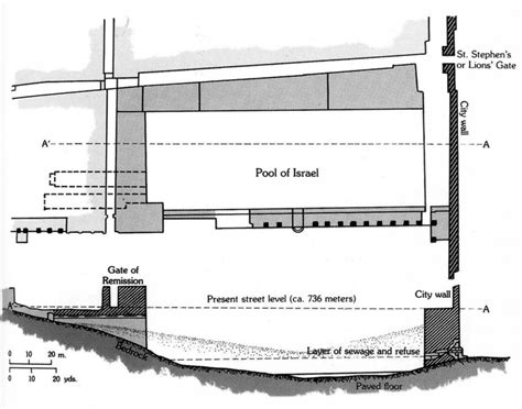 pool cross section plan and cross section of the pool of israel close to the