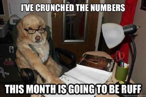 Accountant Dog Meme - financial advice dog know your meme