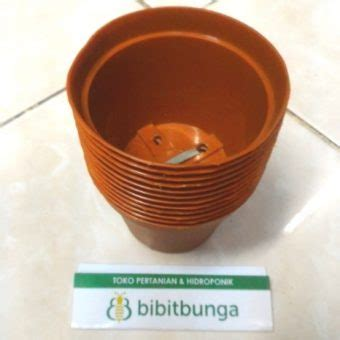 pot bunga vanda 750 merah bata bibitbunga