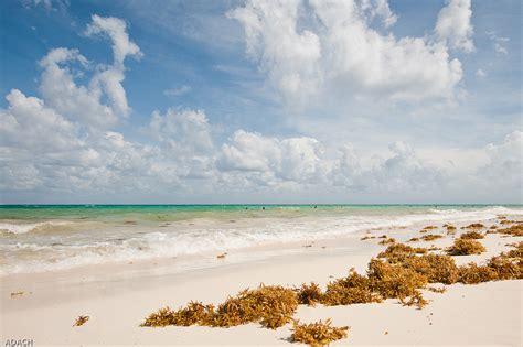 beautiful beaches   world travel pleasure