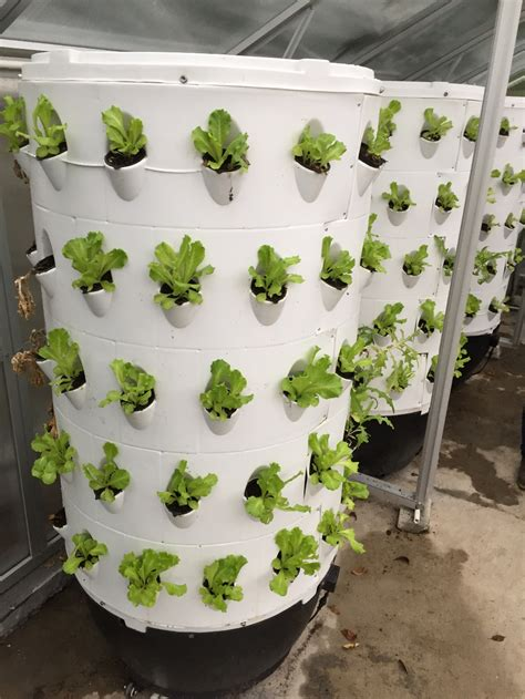 vertical gardening hydroponic grow system drip tower grow