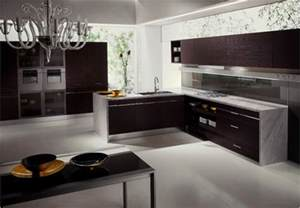 Kitchen Ideas Gallery Modern Kitchen Designs Pictures Iroonie Com
