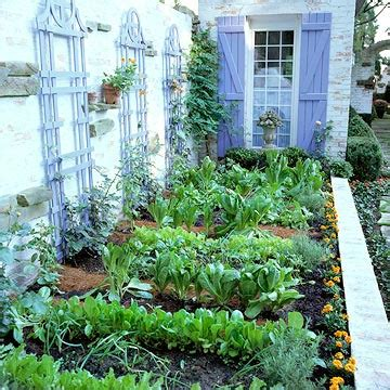 what to plant in a small vegetable garden planning your vegetable garden