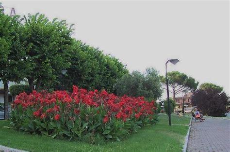 giardini fioriti immagini giardini fioriti lungo la passegiata a valle viale
