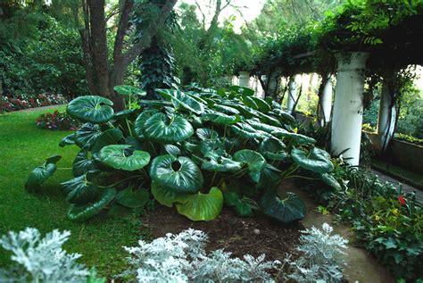 giardini italia giardini d italia i 10 giardini pi 249 belli da visitare