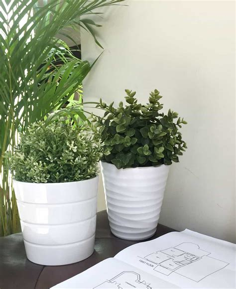 ikea fake trees why you should use plants in your home tips tricks