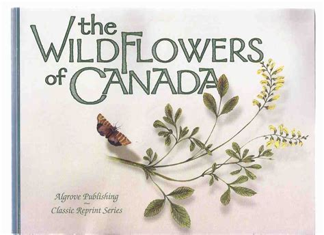 and the new race classic reprint books the wildflowers of canada from the montreal