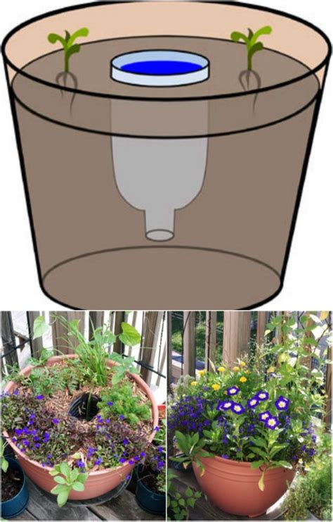 expert gardening tips ideas  projects