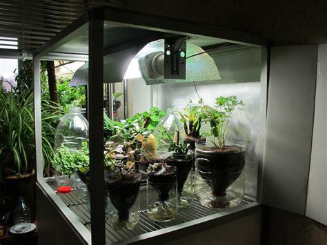 home  grow box    experimental idea