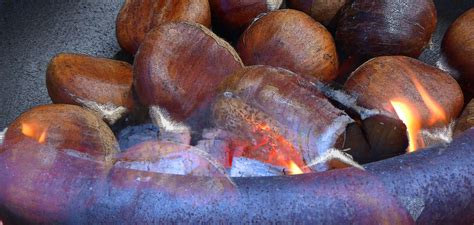 Roasting Chestnuts In Fireplace by Roasting Chestnuts Open Free Stock Photo