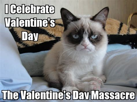 Grumpy Cat Meme Valentines Day - roses are red violets are blue valentine s day poems