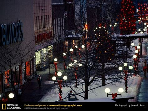 christmas wallpaper national geographic national geographic christmas wallpaper best toys collection